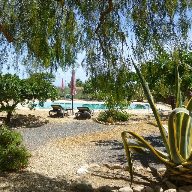 our-beautiful-pool-at-finca-arboleda